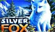 Игровой автомат Silver Fox онлайн бесплатно